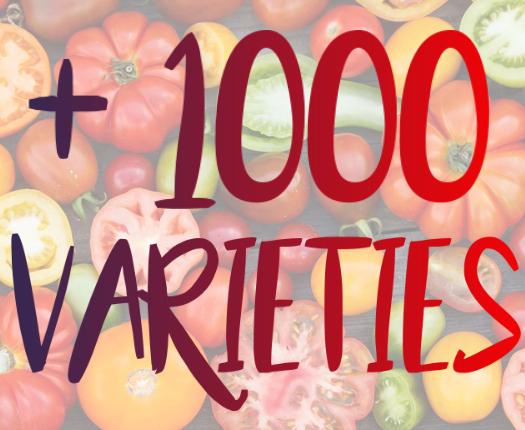 1000 varieties