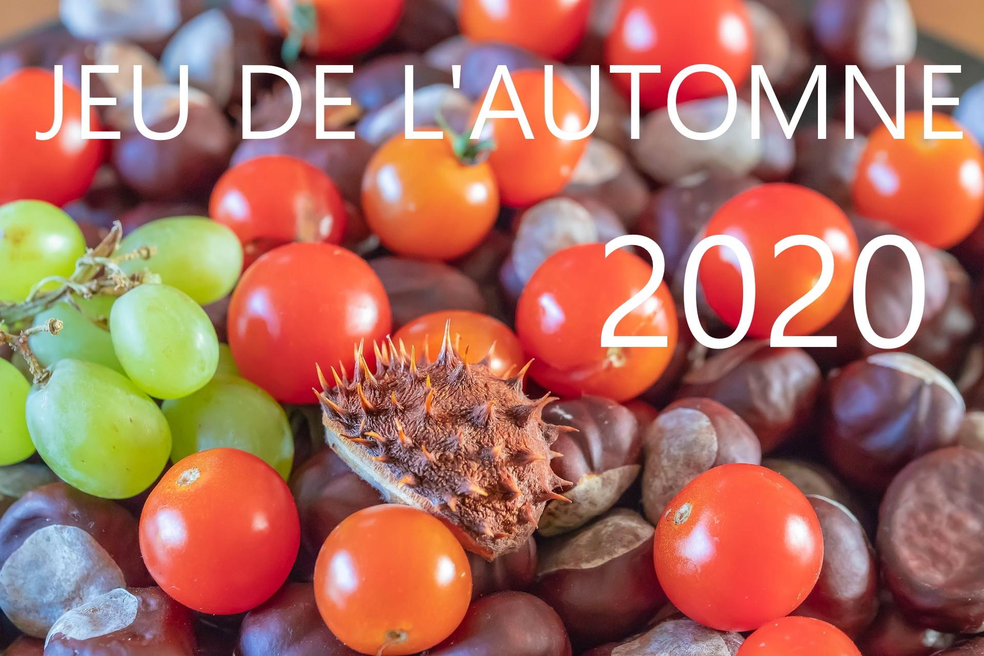 Jeu automne 2020