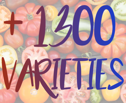 1300 varieties