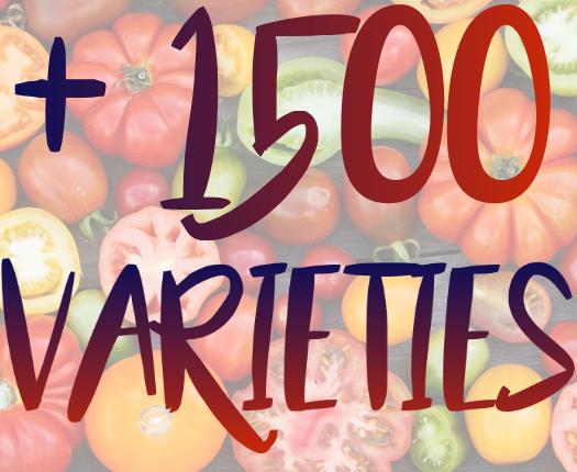 1500 varieties